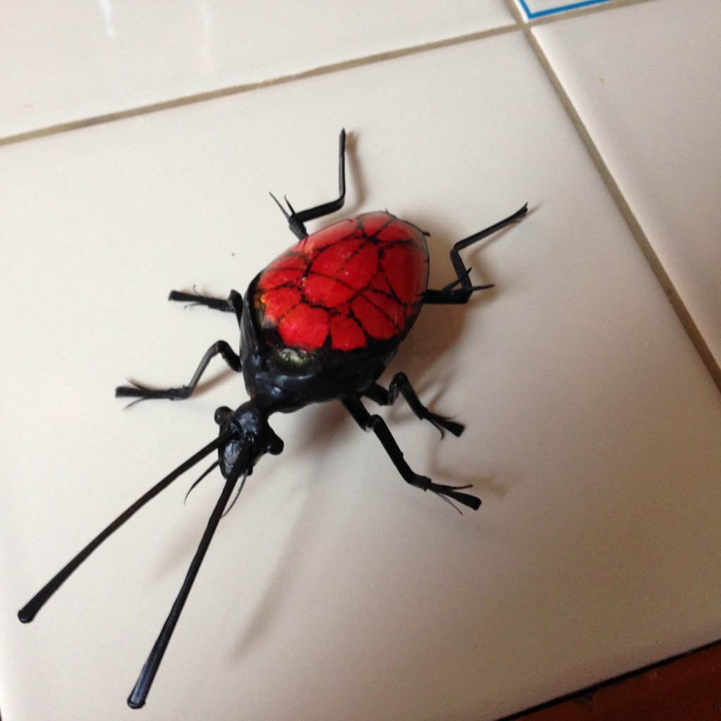Tom made this bug out of plastic utensils.